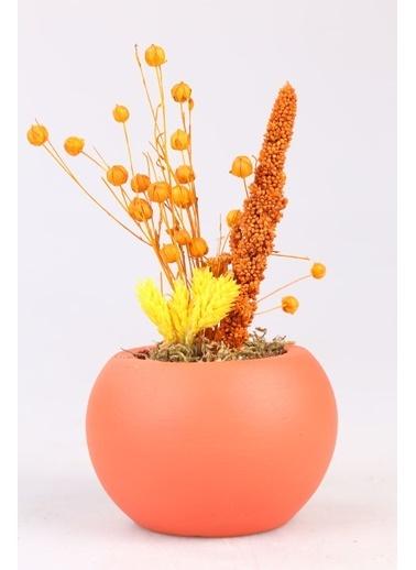 Kibrithane Çiçek Yapay Çiçek  Beton Saksı Kuru Çiçek Aranjman Kc00200761 Renkli